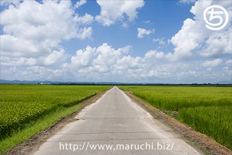まるちimage田園風景