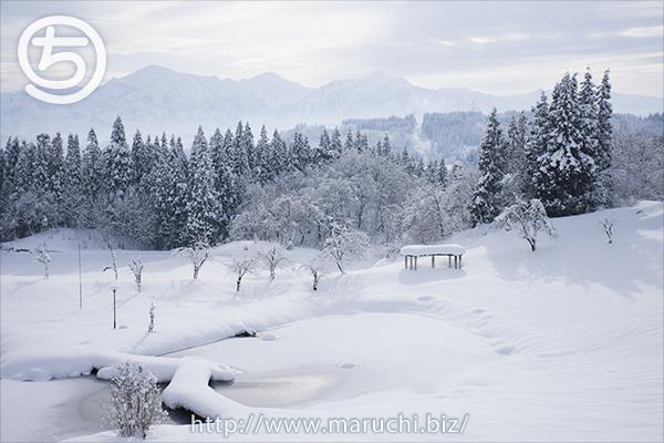 まるちimage写真 川口きずな館から見た雪景色2019年一月