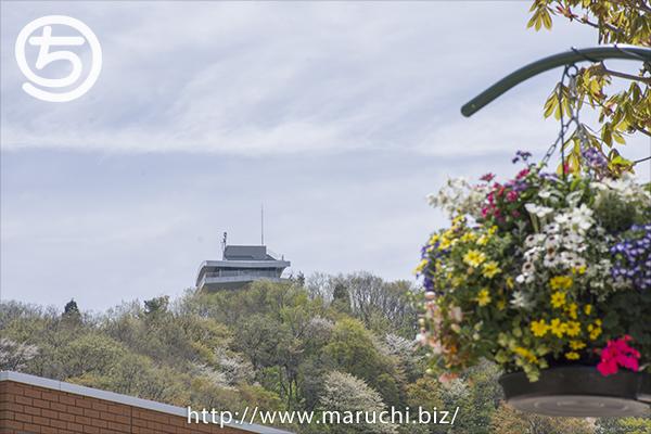 吊り鉢の花と展望台越後丘陵公園2019年四月